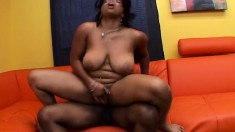 Curvaceous ebony cutie Stacie Lane feeding her desire for black meat