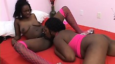 Two sexy black lesbians embark on a wild adventure with pleasure as their desitination