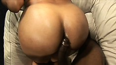 Big-booty ebony cocksucker loves to get creampied by a hung black stallion