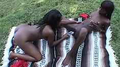Voluptuous black pussy-loving chicks have a hot lesbian fuck fest