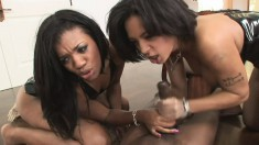Sexy ebony model fights with her friend over this stud's big cock