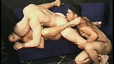 Voluptuous shemale gets her cumhole slammed by two guys in a cage