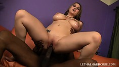 Large hooter brunette Cassandra Calogera goes black with a throbbing cock