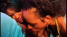 Two stunning ebony chicks fight over a black charmer's fat wang