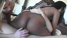 Sydnee and Lain hand out a double blowjob and get cunts nailed in threesome